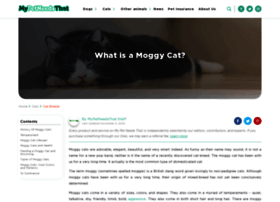 moggies.co.uk