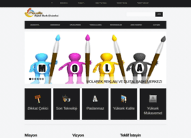 moladijital.com