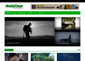 moldychum.com