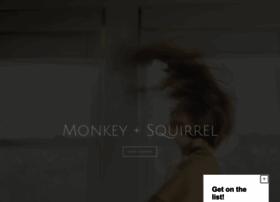 monkeyandsquirrel.blogspot.com