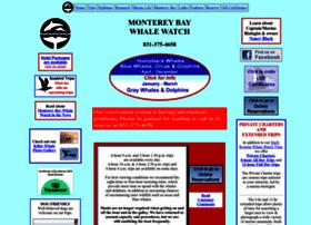 montereybaywhalewatch.com