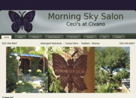 morningskysalon.com