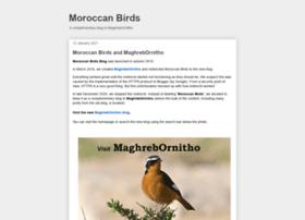 moroccanbirds.blogspot.com