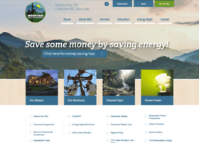 mountainelectric.com