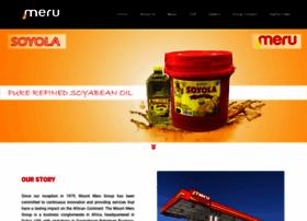 mountmerugroup.com