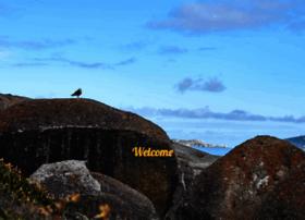 mozzle.com