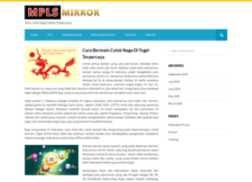 mplsmirror.com