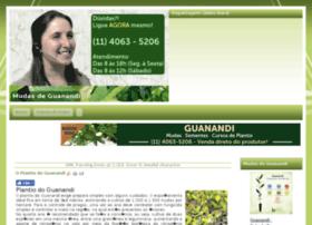 mudasdeguanandi.com.br