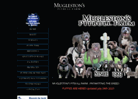 muglestonspitbullfarm.com