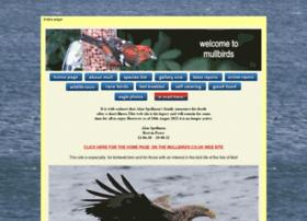 mullbirds.com