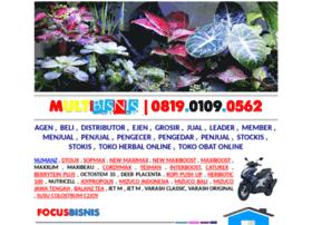 multibisnis.com