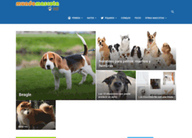 mundomascota.net