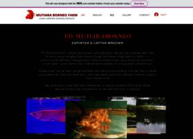 mutiaraborneo.com