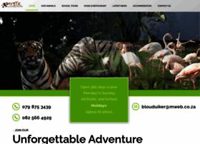 mysticmonkeys.co.za