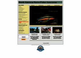 nanfa.org