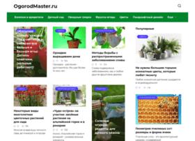 naogorod.ru
