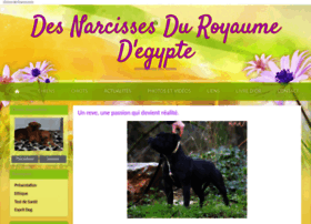 narcissesduroyaumedegypte.chiens-de-france.com