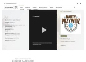 nartyprzywidz.com.pl