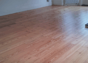 naturalfloorsanders.co.uk