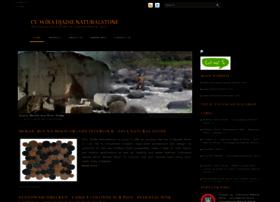 naturalstonetulungagung.blogspot.com