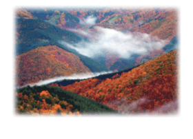 nature.uni-plovdiv.bg