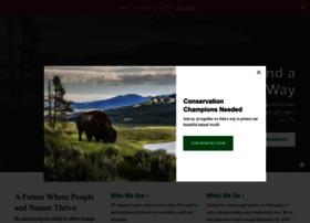 natureconservancy.org