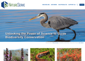 natureserve.org