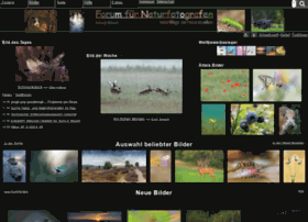 naturfotografen-forum.de