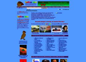 naute.com