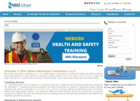 nbizinfosol.com