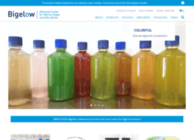 ncma.bigelow.org