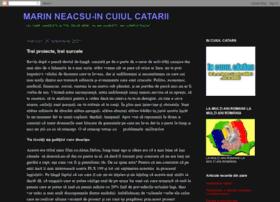 neacsum.blogspot.com