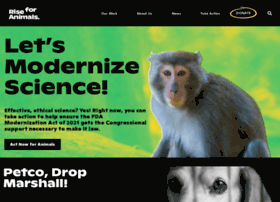 neavs.org