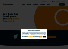neptune-software.com