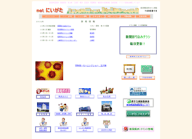 net-niigata.com