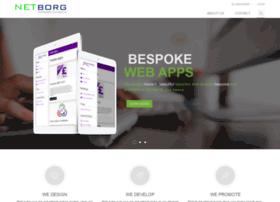 netborgtechnologies.co.uk
