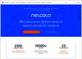 netcat.ru