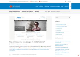 netconsulting.es