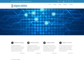 netgenus.com
