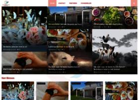 netherlands-startpage.com