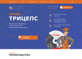 netix.ru