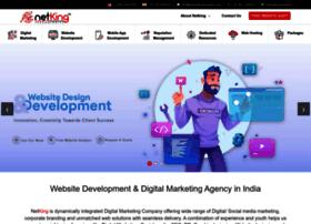netkingtechnologies.com