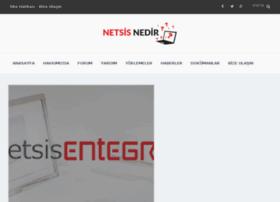 netsisnedir.com