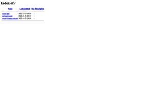 netvisionsolutions.net