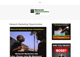 networkopportunities.net