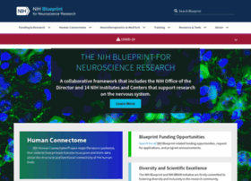 neuroscienceblueprint.nih.gov