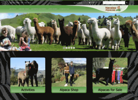 nevaleaalpacas.co.nz