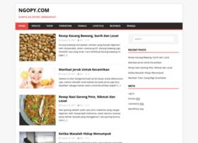 ngopy.com