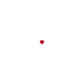 nibl.com.np