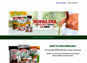 nopalinausa.com